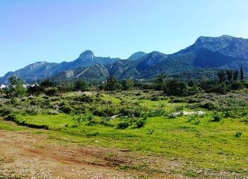 Thumbnail Land for sale in Kyrenia, Catalkoy, Northern Cyprus
