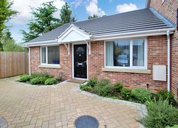 Thumbnail 2 bed bungalow for sale in Kemball Street, Ipswich