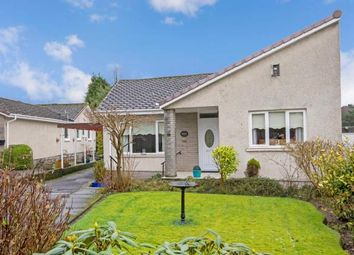 Thumbnail 4 bedroom bungalow for sale in Amochrie Drive, Paisley, Renfrewshire