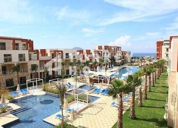 Thumbnail 1 bed apartment for sale in Bodrum, Mugla, Turkey