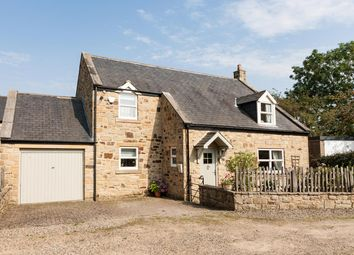 Thumbnail 3 bed detached house for sale in Rose Hill Cottage, Hill House Close, Great Whittington, Northumberland