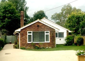 Thumbnail 4 bed detached bungalow for sale in North Stream, Marshside, Canterbury, Kent