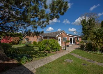 Thumbnail 4 bed detached bungalow for sale in Sneath Road, Aslacton, Norwich