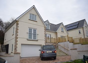 Thumbnail 3 bed property to rent in Glenfryn, Porthyrhyd, Carmarthenshire
