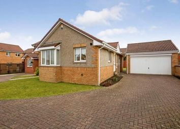 Thumbnail 3 bed bungalow for sale in Poplar Way, Cambuslang, Glasgow, South Lanarkshire