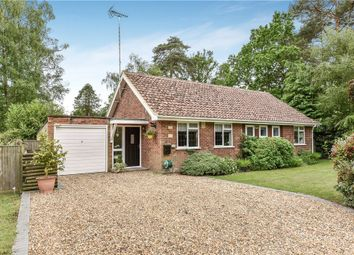 Thumbnail 2 bed detached bungalow for sale in Leyside, Crowthorne, Berkshire