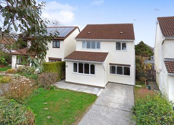 Thumbnail 4 bedroom detached house to rent in Dawlish Close, Newton, Swansea