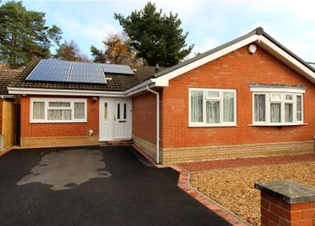 Thumbnail 4 bed detached bungalow for sale in Lavender Close, Verwood