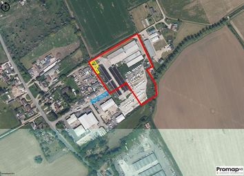 Thumbnail Land for sale in Former Mapledean Poultry Farm, Off Maldon Road, Mundon, Maldon, Essex