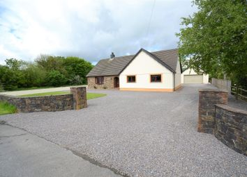 Thumbnail 5 bed detached bungalow for sale in Llanfallteg, Whitland