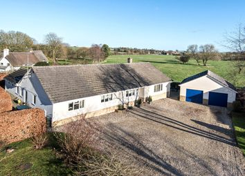 Thumbnail 4 bed bungalow for sale in Fortunes Field, Broad Hinton