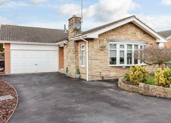 Thumbnail 3 bed detached bungalow for sale in Meadow Drive, Sutton-In-Ashfield, Nottinghamshire