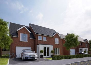 Thumbnail 5 bedroom detached house for sale in Meadow View, Newtownabbey