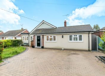Thumbnail 4 bed detached bungalow for sale in Katonia Avenue, Mayland, Chelmsford