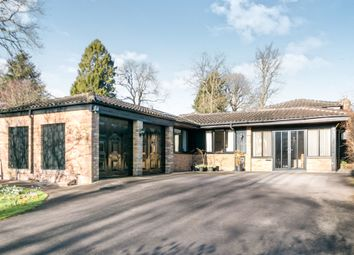 Thumbnail 3 bed detached bungalow for sale in Kings Hill, Beech, Alton