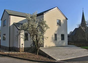 Thumbnail 3 bed detached house for sale in Harbertonford, South Devon