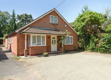 Thumbnail 3 bedroom bungalow to rent in Barkham Ride, Finchampstead, Wokingham