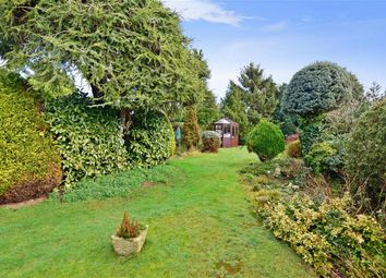 Thumbnail 2 bed detached bungalow for sale in Beeches Avenue, Worthing, West Sussex
