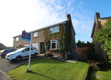 Thumbnail 4 bed semi-detached house for sale in Harryville Park, Lisburn