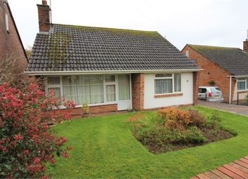 2 bed bungalow to rent in Springfield Road, Exmouth EX8