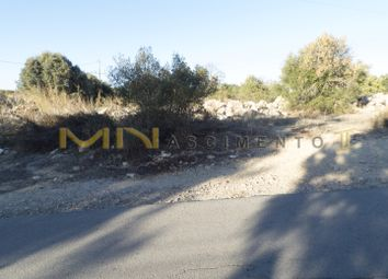 Thumbnail Land for sale in Conceição De Faro, Portugal