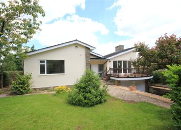 Thumbnail 4 bed bungalow for sale in Little Birch, Hereford