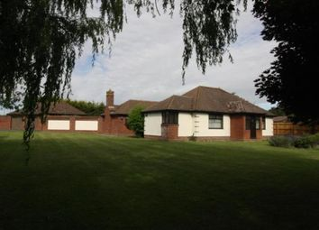 Thumbnail 4 bed bungalow for sale in Little Tey, Colchester, Essex