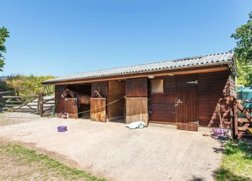 Thumbnail Property for sale in Sandford, Crediton
