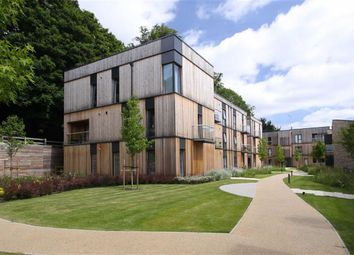 Thumbnail 2 bedroom flat for sale in Clock House Gardens, Welwyn, Hertfordshire