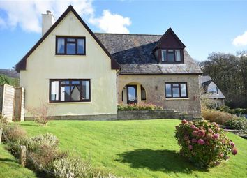 Thumbnail 3 bed detached house for sale in Fairways Close, High Bickington, Umberleigh