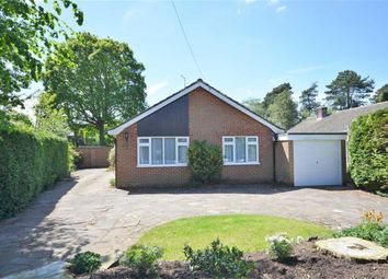 Thumbnail 3 bedroom detached bungalow for sale in Burnt Hill Way, Wrecclesham, Farnham