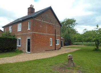 Thumbnail 3 bed semi-detached house to rent in Edges Lane, Morningthorpe, Norwich, Norfolk