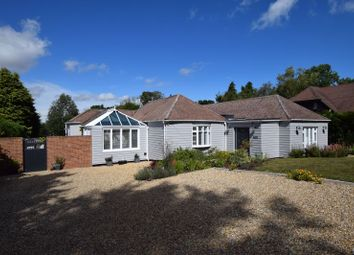 Thumbnail 4 bed detached bungalow for sale in Windsor Road, Medstead, Alton, Hampshire