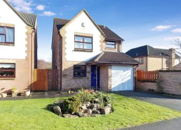 Thumbnail 3 bed detached house for sale in Blagdon Walk, Frome
