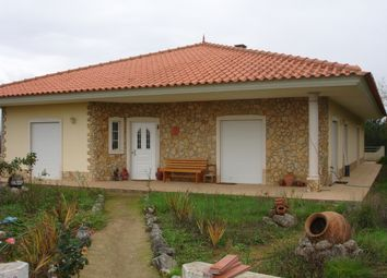 Thumbnail 3 bed detached house for sale in Chão Do Pião, Cardigos, Mação, Santarém, Central Portugal