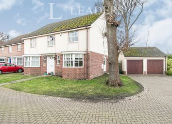 Thumbnail 4 bed detached house to rent in Pinecroft Gardens, Highwoods, Colchester