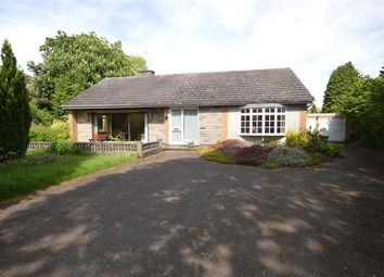 Thumbnail 3 bed bungalow for sale in Moores Lane, Enderby, Leicester
