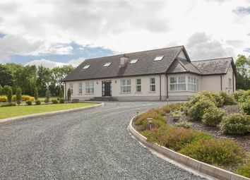Thumbnail 3 bed terraced bungalow for sale in 195, Clay Road, Killinchy