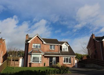 Thumbnail 4 bed detached house for sale in Knockdarragh, Fullerton Road, Newry