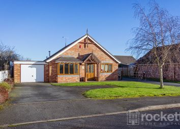 Thumbnail 2 bedroom detached bungalow to rent in Primrose Hill, Handford, Stoke-On-Trent