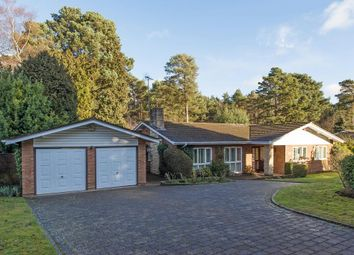Thumbnail 3 bed bungalow to rent in Spinney Close, Cobham