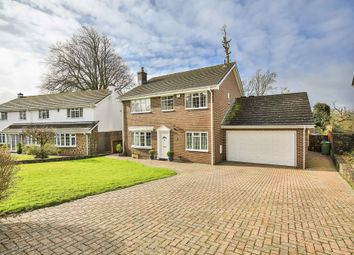 Thumbnail 4 bedroom detached house for sale in Village Farm, Bonvilston, Cardiff