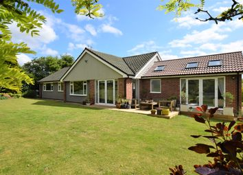 Thumbnail 4 bed detached bungalow for sale in Ufford Place, Ufford, Woodbridge