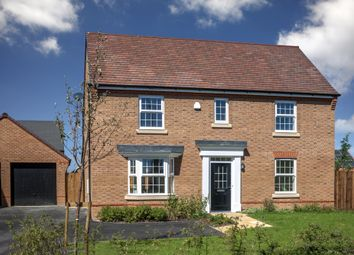 "Thumbnail 4 bed detached house for sale in ""Cadleigh I"" at Grove Road, Preston, Canterbury"