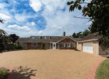 Thumbnail 5 bed detached bungalow for sale in 252 Thorpe Road, Longthorpe, Peterborough