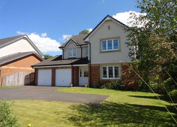 Thumbnail 4 bed detached house for sale in Summerpark Way, Dumfries