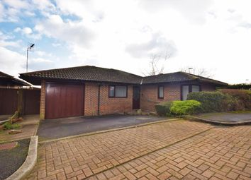 Thumbnail 3 bedroom bungalow for sale in Lychpit, Basingstoke