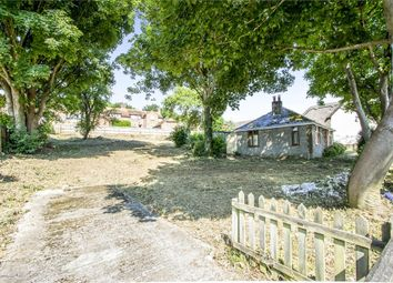 Thumbnail 3 bed detached bungalow for sale in Chapel Street, Milborne St Andrew, Blandford Forum, Dorset