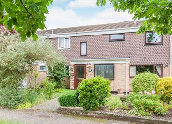 Thumbnail 3 bed terraced house to rent in Stanley Road, Roydon, Diss