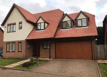 Thumbnail 5 bedroom detached house for sale in Brinklow Court, St.Albans